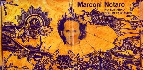 marconi_notaro_-_no_sub_reino_dos_metazo_rios_web